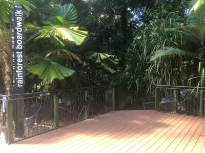 Rainforest Boardwalk