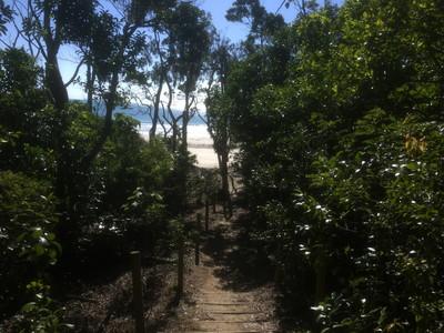 ケープヒルズボロー国立公園