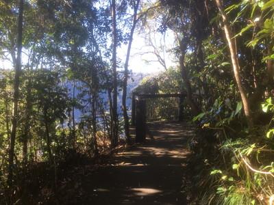 ユンゲラ国立公園