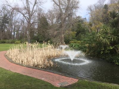 ドルフィンの泉