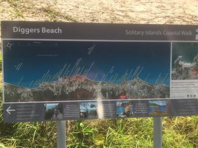 ディガーズビーチ