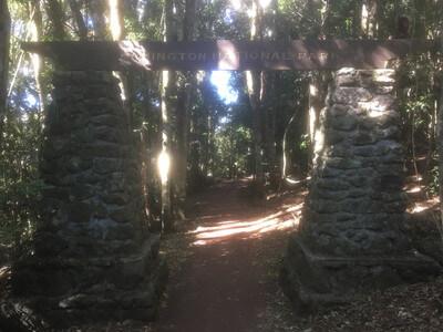 ラミントン国立公園のトレッキング