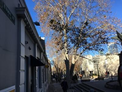 ユニオンストリート