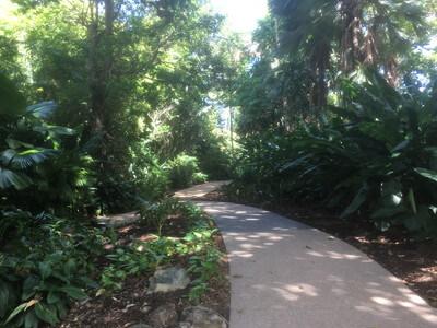 Flecker Garden