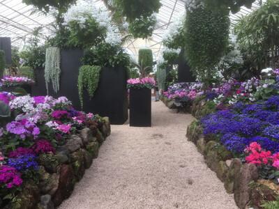 フィッツロイガーデンの温室