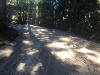 フレーザー島の砂の道