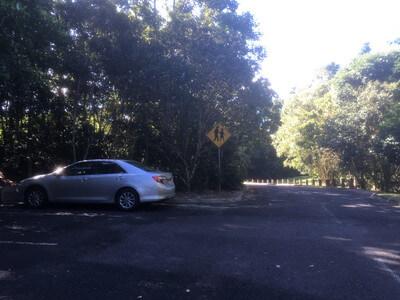 バロンゴージ国立公園の駐車場
