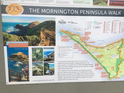 モーニントン半島のトレッキングコース
