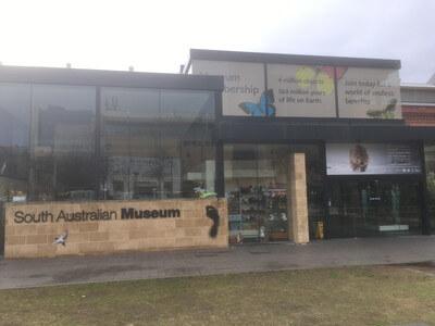 南オーストラリア博物館