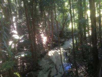 Pile ValleyとWanggoolba Creek