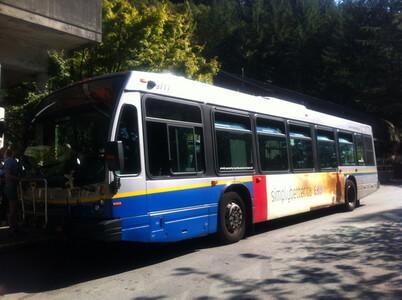 236番のバス