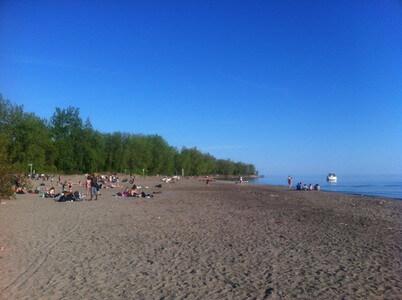 トロントアイランドのヌーディストビーチ