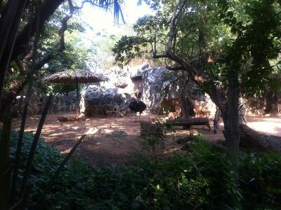 バンコクのドゥシット動物園