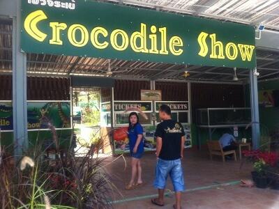 チェンマイ郊外のクロコダイルショー