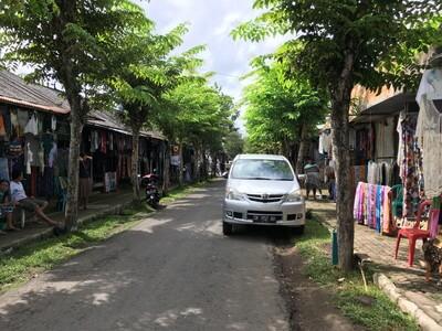 ウブド郊外のグヌン・カウイ