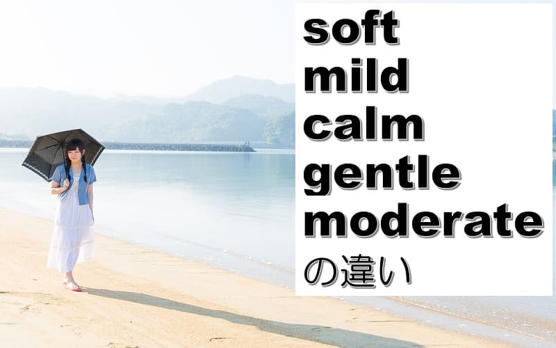 soft・mild・calm・gentle・moderateの違い