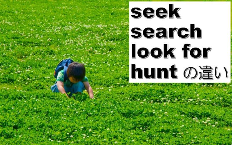 hunt・seek・search・look forの違い