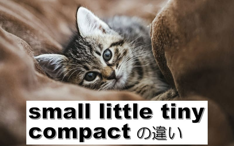 small・little・tiny・compactの違い
