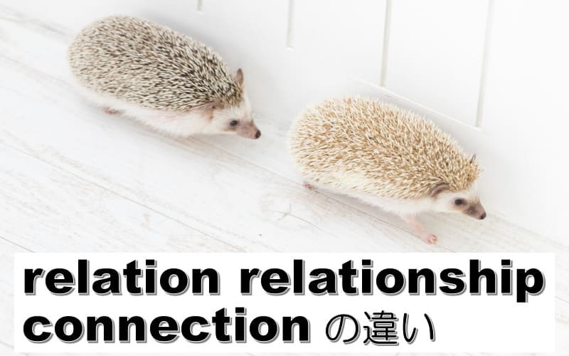relation・relationship・connectionの違い