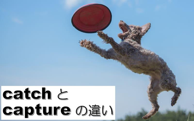 catchとcaptureの違い