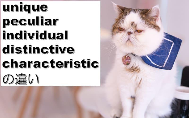 unique・peculiar・individual・distinctive・characteristicの違い
