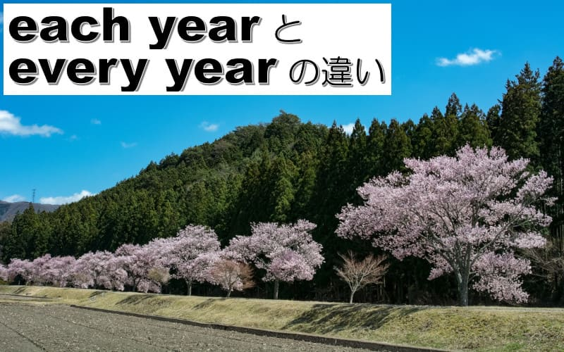 each yearとevery yearの違い